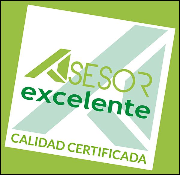 Asesor Excelente - Logo